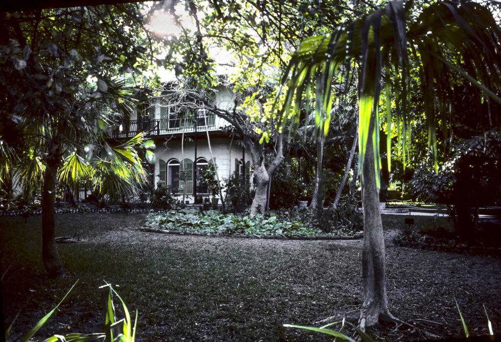 הבית של המנגווי