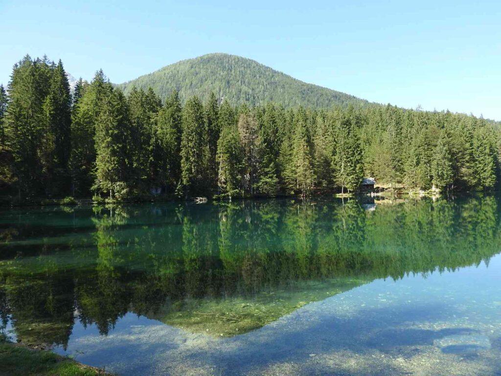 השתקפות העצים באגם פרדיל